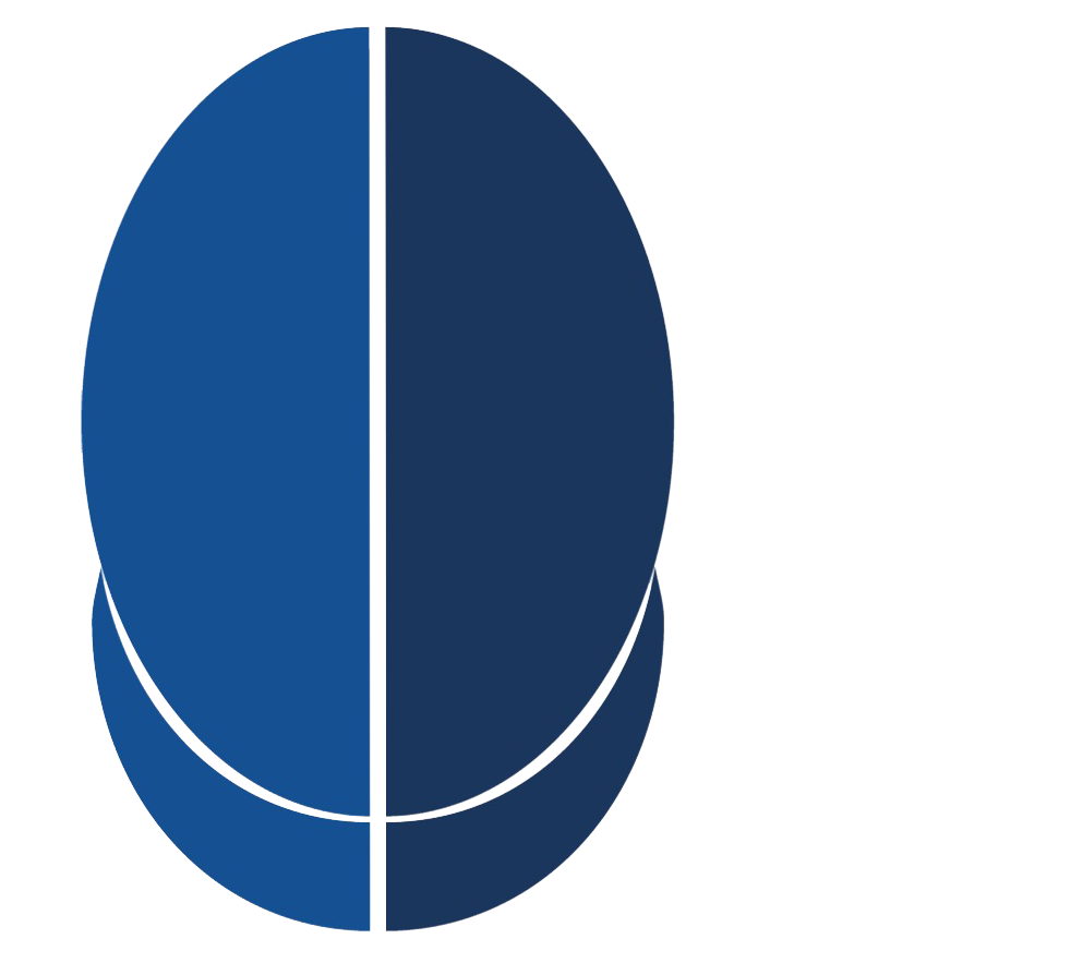 BLUES FENCING